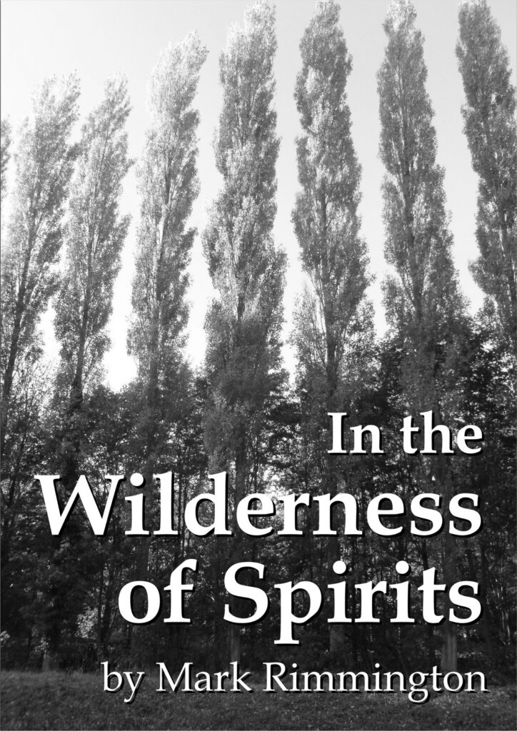 Cover for In the Wilderness of Spirits by Mark Rimmington